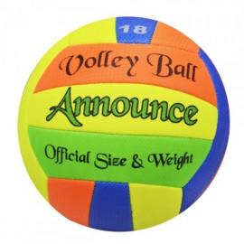 Balón de Voleibol - Envío Gratuito